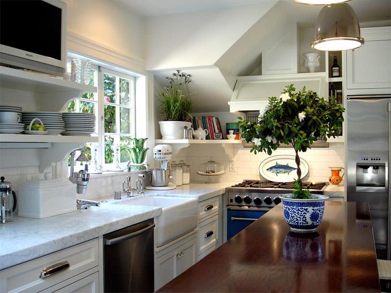 Plantinhas na cozinha