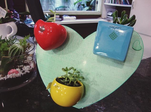 Inspiração - Temperos na cozinha