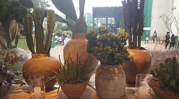 Shopping Garden faz tour na Casa Cor SP 2015