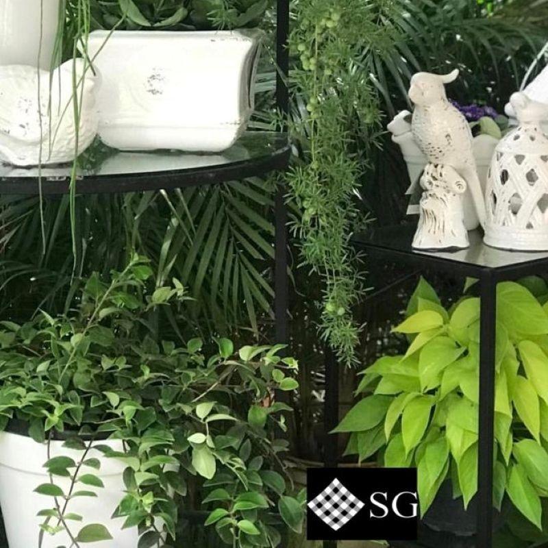 Componha o décor com diferentes vasos e vegetações
